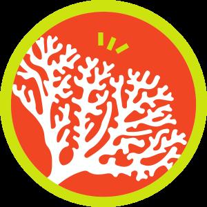 รูปปะการังไฟ (Fire coral)